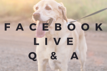Facebook Live Question and Answer Session