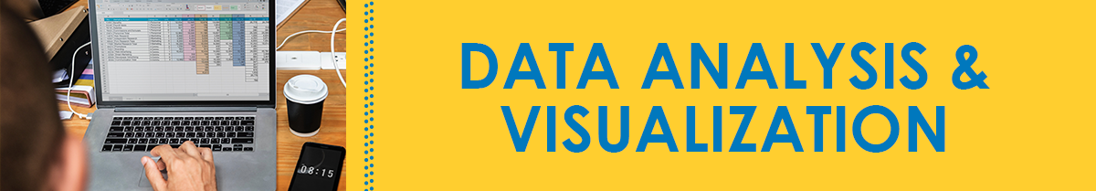 Data Analysis and Visualization Grant