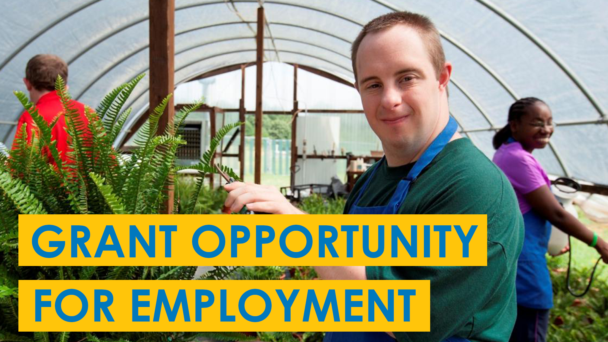 Man works in a greenhouse and looks at the camera to advertise grant opportunity for employment